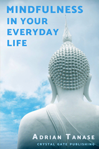 Mindfulness in Your Everyday Life by Adrian Tanase